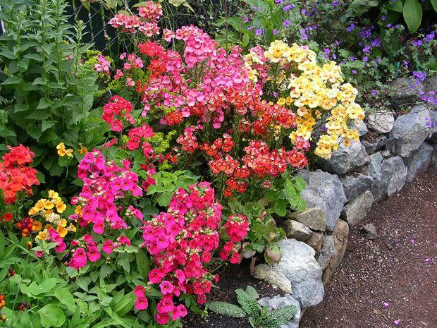 Pin En Gardening And More