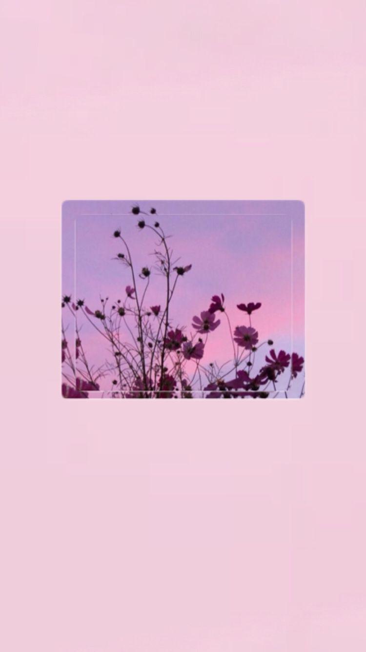 İphone Wallpapers> Pinterest : esina1 - hailey
