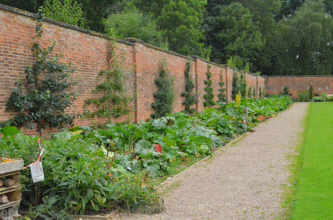 Image Result For Examples Of Georgian Houses With Walled Gardens Garden Wall Wall Garden Georgian Homes