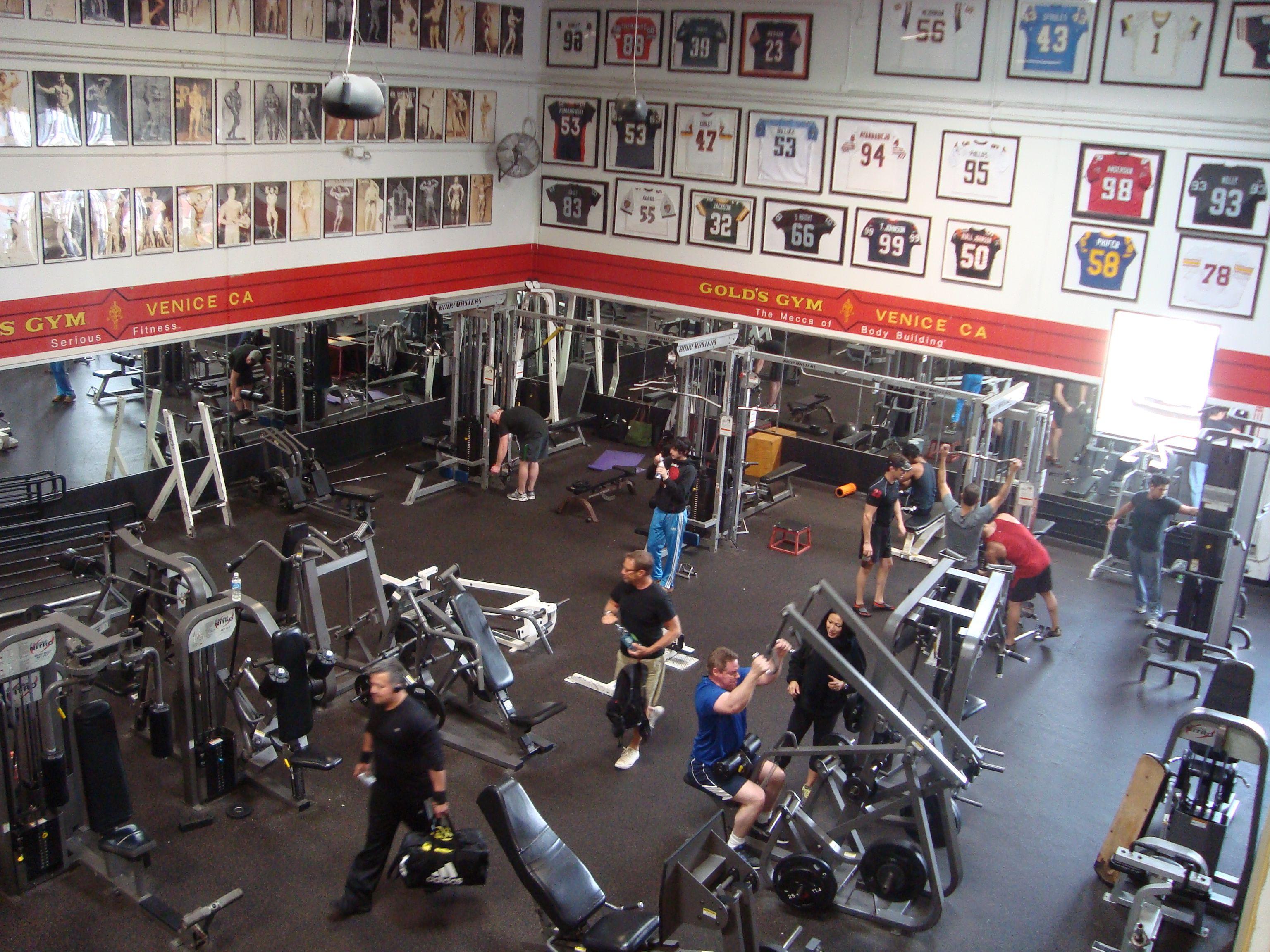 Gold's Gym – Venice, CA: The Mecca of Bodybuilding | los ...