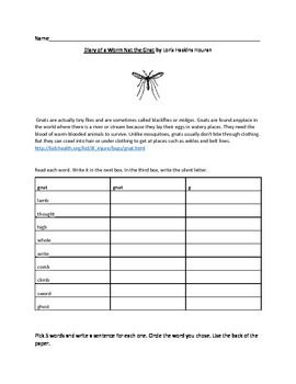 This packet is designed to be used with Diary of a Worm, Nat the Gant. There is an activity page for each chapter that includes work in: r- controlled vowels, silent letters, comparing and contrasting, character traits, and more. There are also some writing activities and 20 discussion questions included.