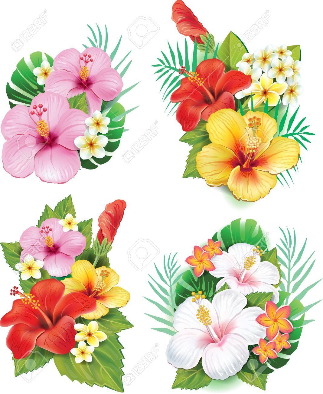 21670794 arrangement from hibiscus flowers stock vector hawaiian 21670794 arrangement from hibiscus flowers stock vector hawaiian hibiscus flowerg 10681300 izmirmasajfo