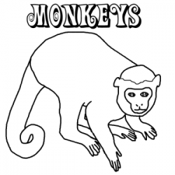 Dozens of free monkey coloring pages from around the internet