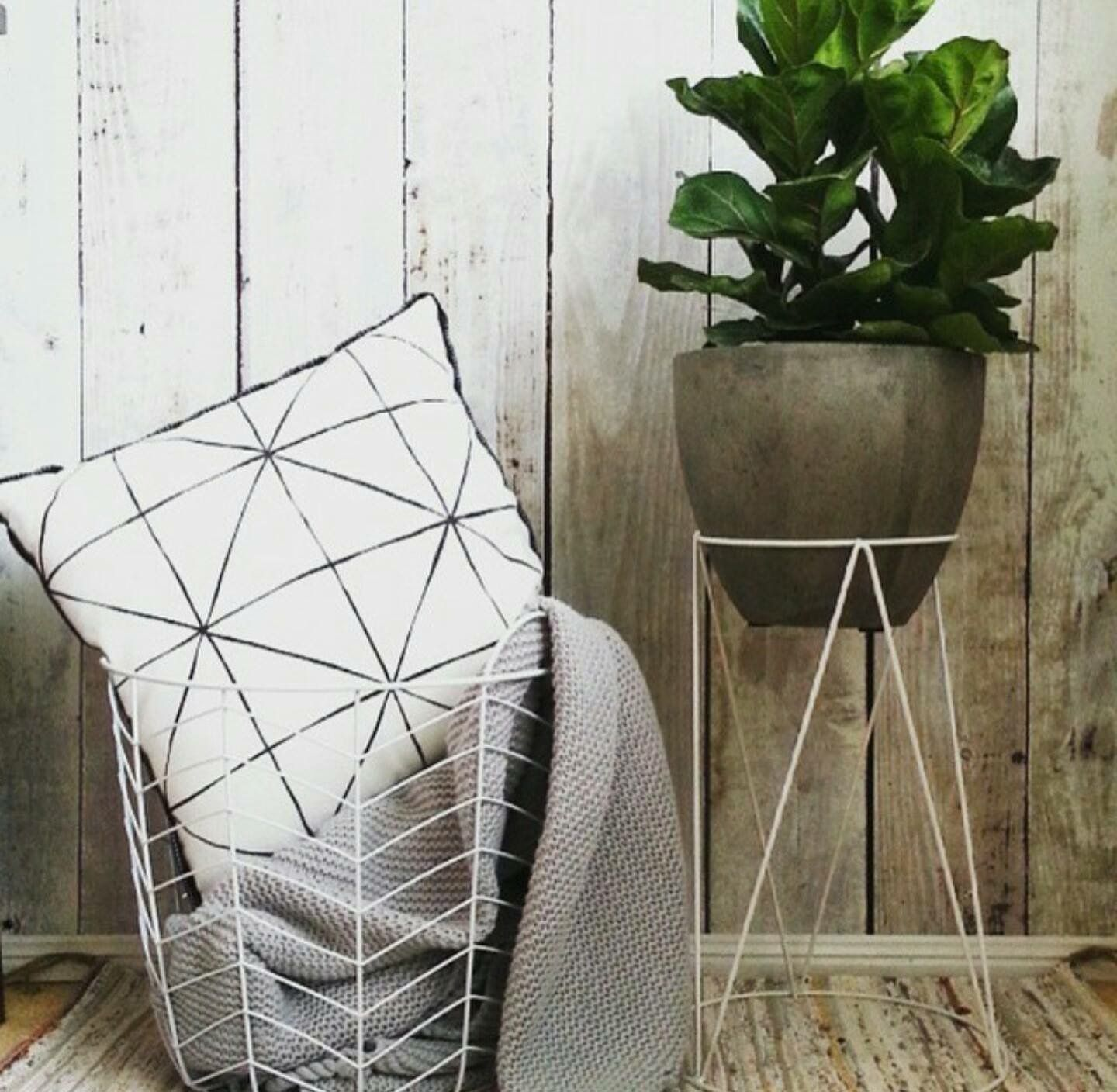 This Is Your Solution To The Perfect Plant Storage Idea
