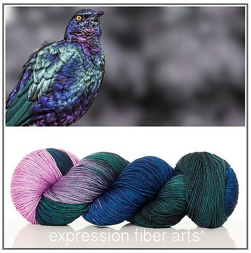 Ravelry: Expression Fiber Arts Resilient Superwash Merino Sock - Purple Glossy Starling