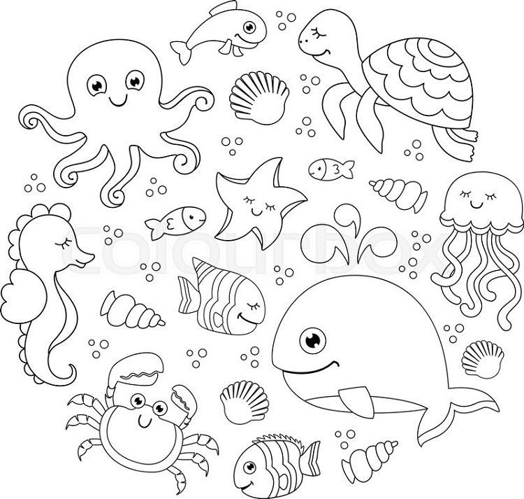 Sea Life Under The Sea Coloring Pages Under The Sea Drawings Sea Drawing Sea Animals Drawings