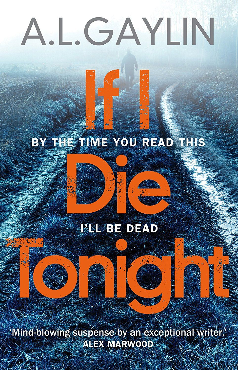 Amazon Libros Para Kindle If I Die Tonight Ebook A L Gaylin Amazon Co Uk Kindle Store