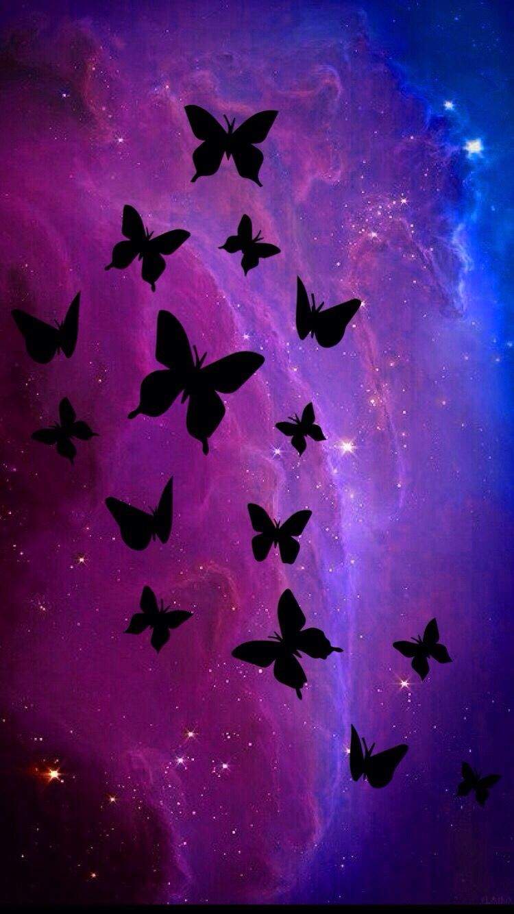 Black And Pink And Purple Butterflies In 2019 Pink