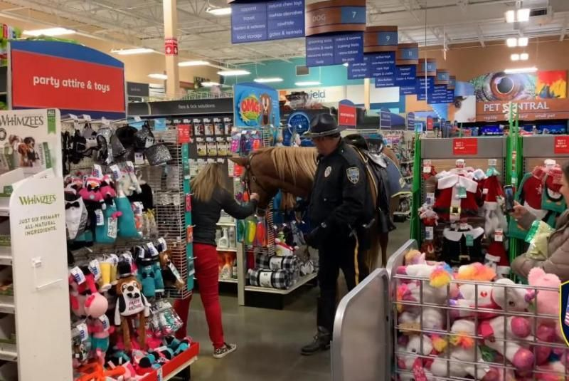 Police Horse Delights Shoppers Inside Petsmart Store Pet Care Is Both Enjoyable Business But It Is An Effort That In 2020 Pet Smart Store Pet Care Pet Supply Stores