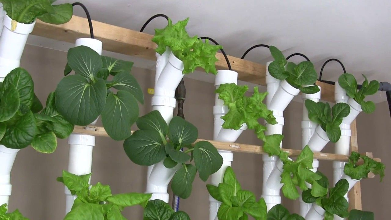 I replaced my 3 inch PVC vertical hydroponic setup with