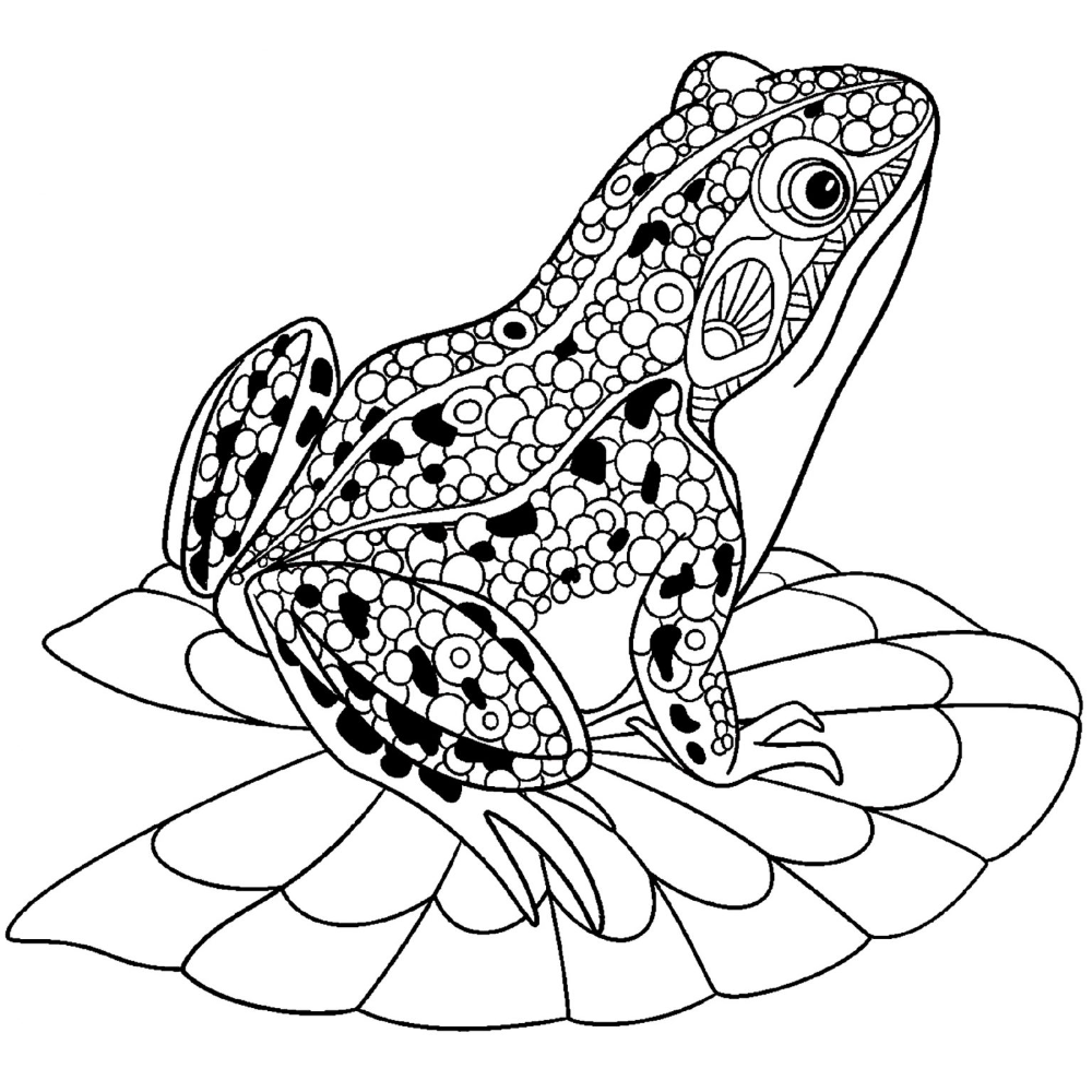 Cute Frog Coloring Sheets in 2020 Coloring sheets, Color
