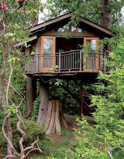 Tiny House - Tree House   ----   #tinyhouse #treehouse
