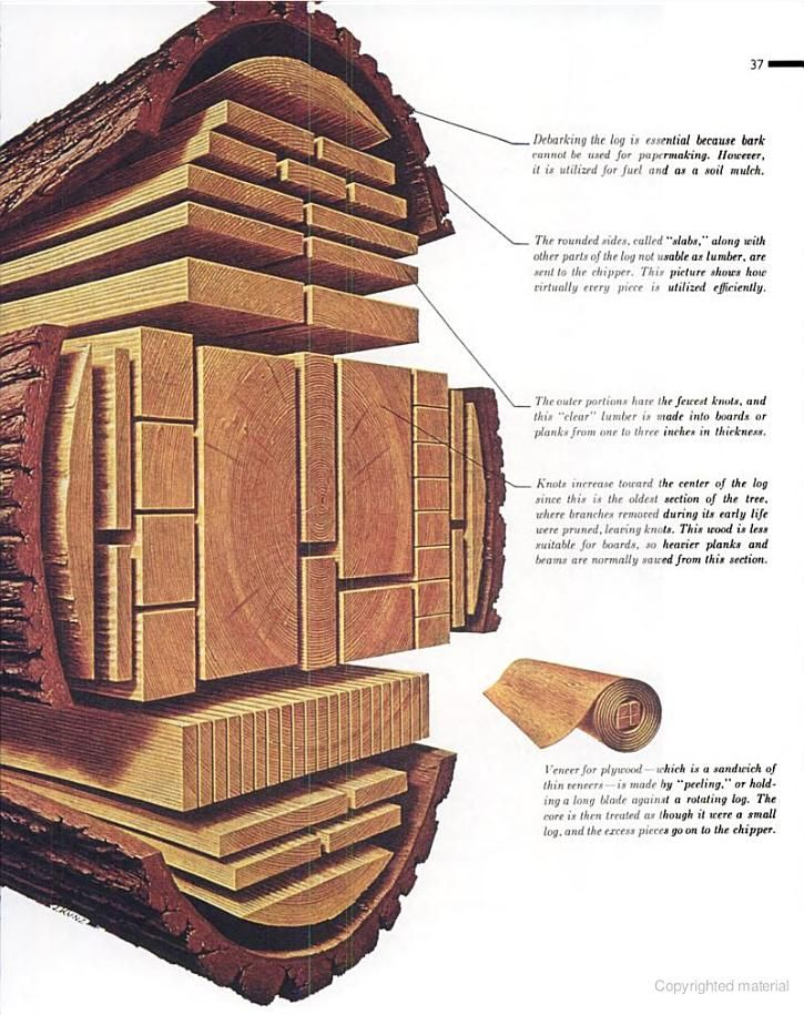 Cutting A Log : Visual function an introduction to information design