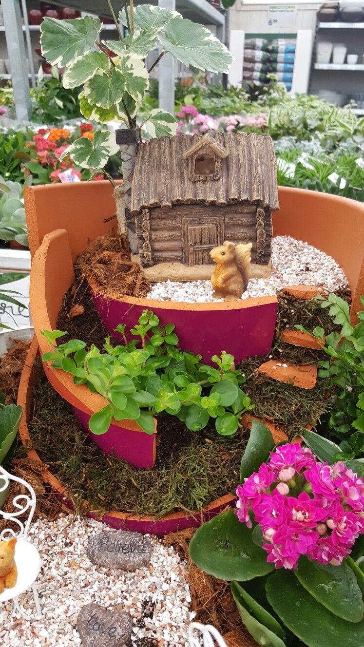 Mini tuinieren met kapotte bloempot! | Mason Minigardens bij GroenRijk Eemsdelta