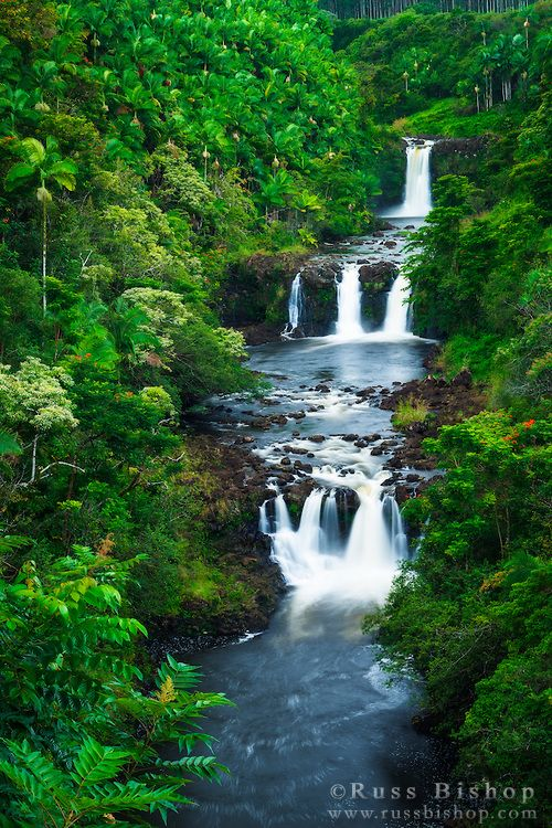 Umauma Falls along the lush Hamakua Coast, The Big Island, Hawaii / © Russ Bishop ~ Click image to purchase a print or license