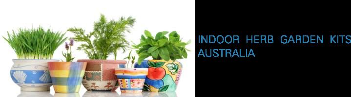 INDOOR HERB GARDEN KITS AUSTRALIA Herbs indoors, Indoor