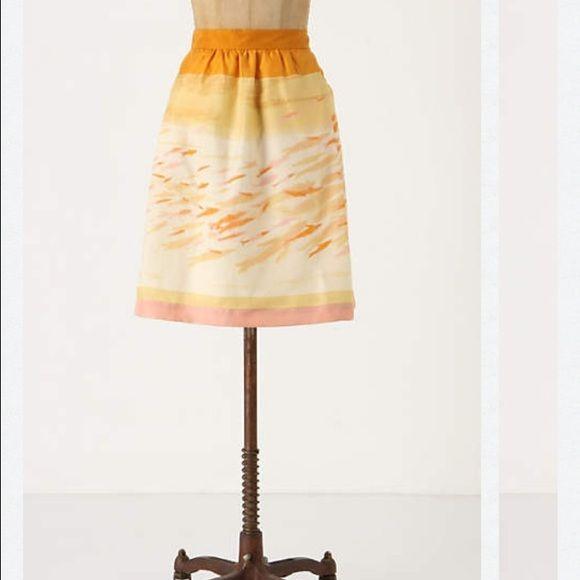 Anthropologie We Love Vera Goldfish Bowl Skirt 2 Sz 2 mint condition. Worn once. Brand: we love Vera Anthropologie Skirts