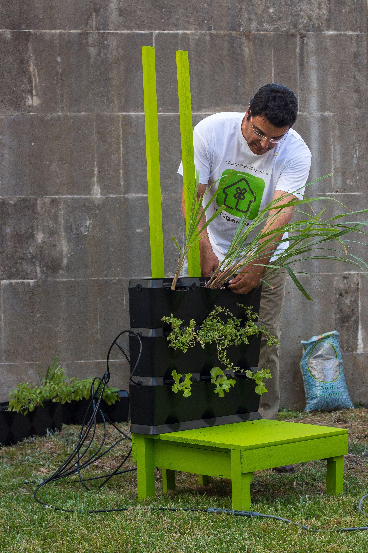 Sistema de riego para jardines verticales y muros verdes for Riego jardin vertical