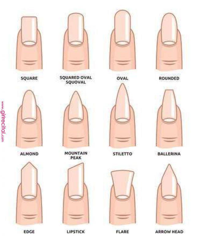 Stock Vector In 2019 Dizajn Nogtej Acrylic Nail Shapes Different Nail Shapes Nail Fo Different Nail Shapes Acrylic Nail Shapes Nail Shapes