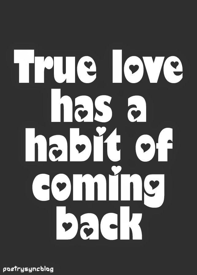 URDU HINDI POETRIES: Love Cute Quotes: Lovely ...