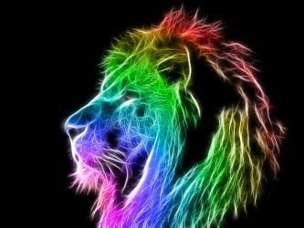Lidiaazul On Twitter Rainbow Lion Colorful Lion Lion Wallpaper