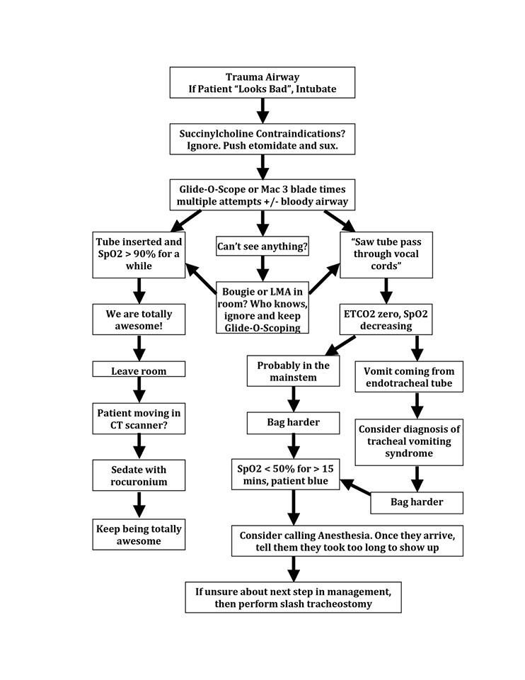 Airway Decision Tree Like It Pinterest Decision tree - decision tree template