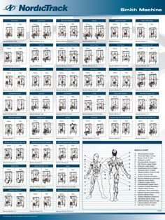 smith machine exercises  smith machine smith machine workout