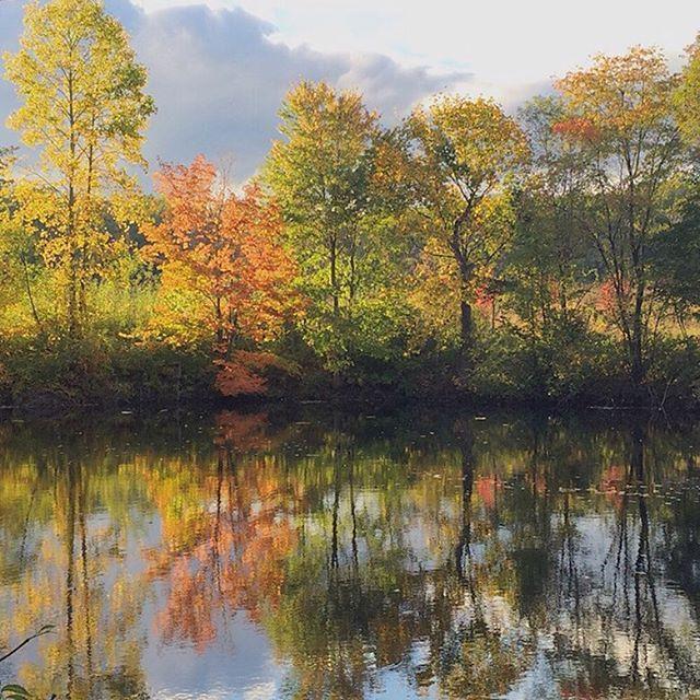 Homepage | Longwood Gardens