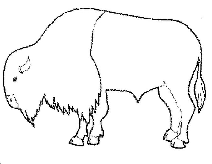 Visit Us For More Free Coloring Pages For Thanksgiving Http Coloringbookfun Com Thanksgiving Thanksgiving Coloring Pages Buffalo Pictures Coloring Pages