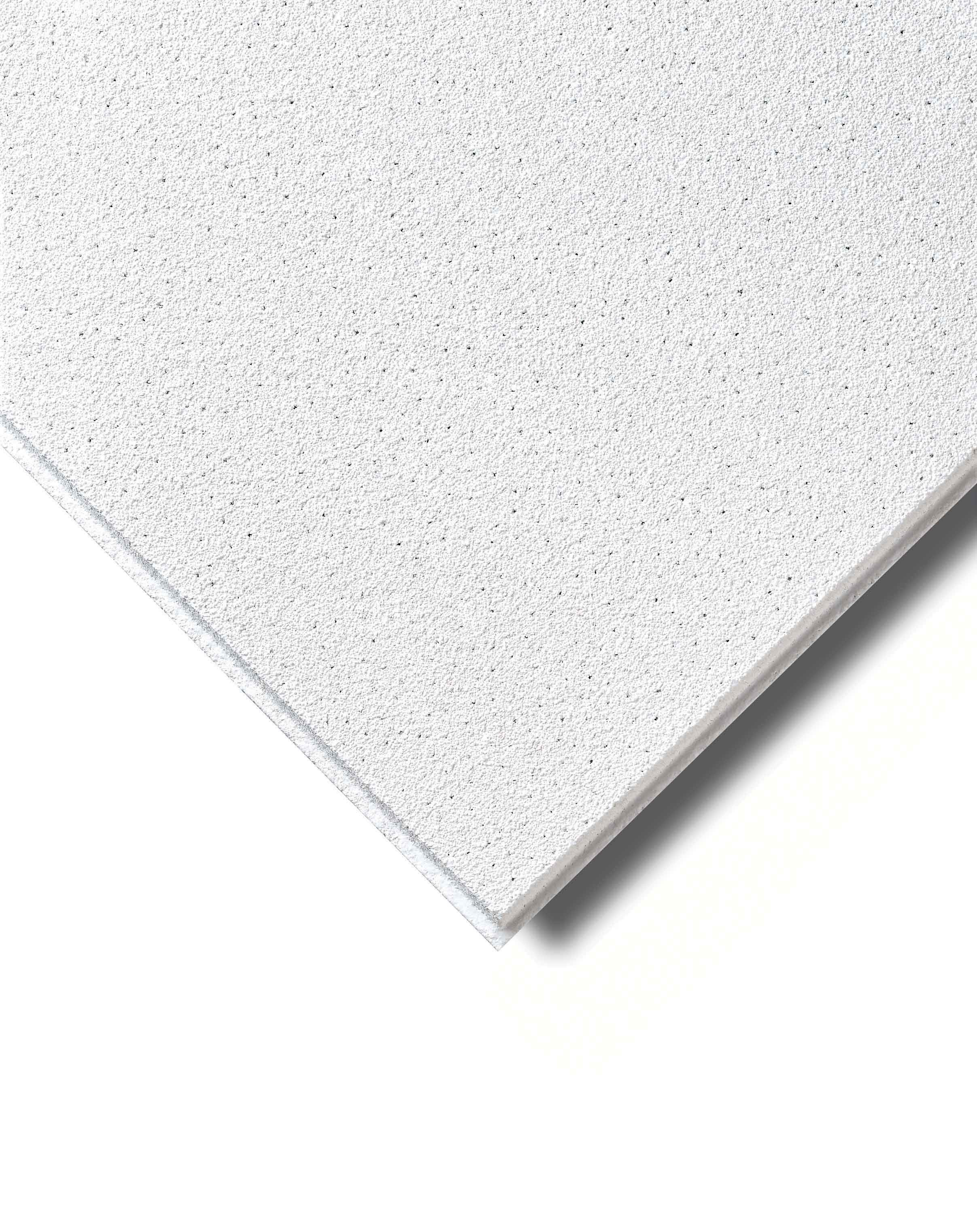Ceiling Tiles 24 X 48 Home Design Ideas