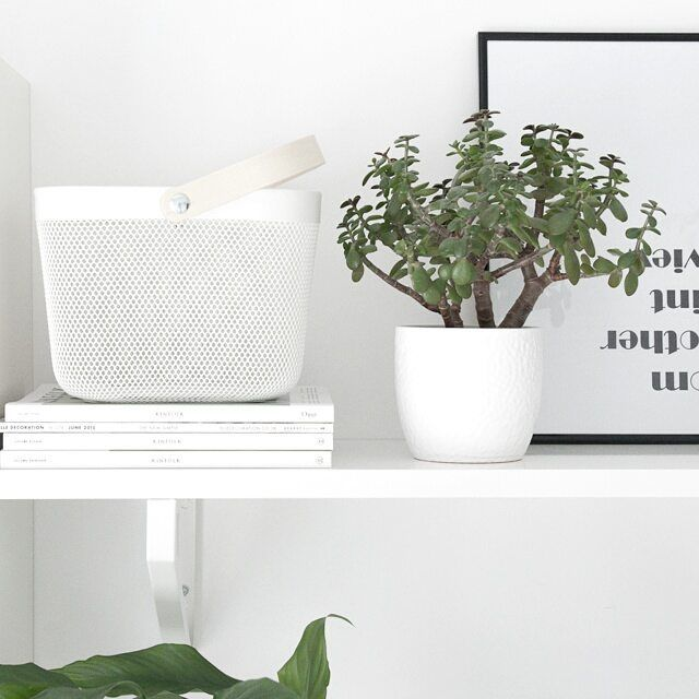 Black And White And Green Plants. IKEA Risatorp Basket