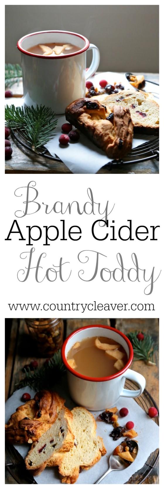 Aged Brandy Apple Cider Hot Toddy Apple cider hot toddy