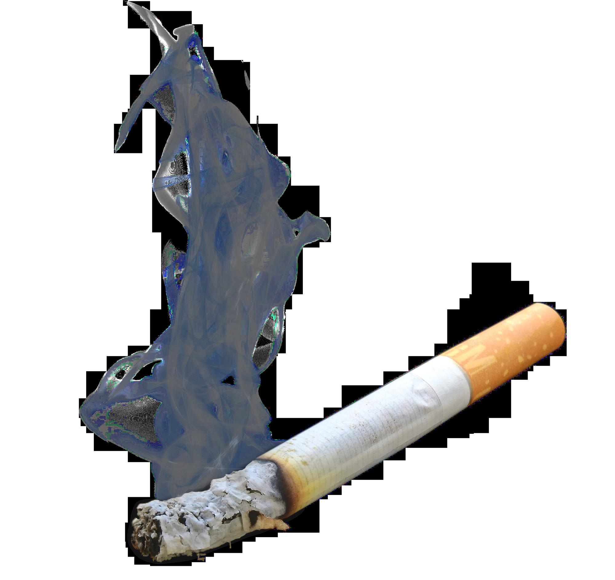 Pin On Tobacco
