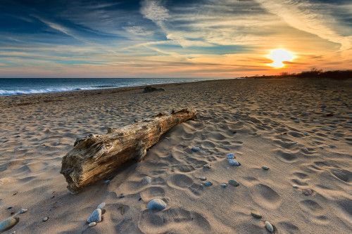 Photograph Of Driftwood Washed As At Moonstone Beach Photo Courtesy Mike Dooley Photography