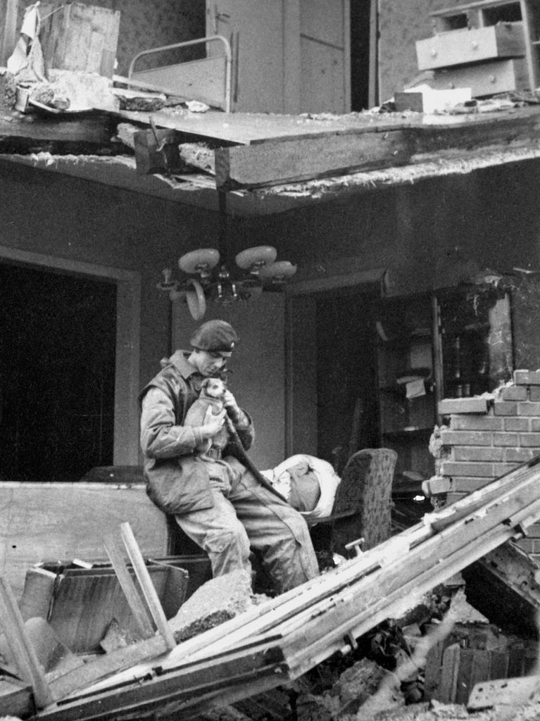 British Trooper rescued a puppy from the ruins of a shelled German house on the outskirts of Geilenkirchen, Nov 1944