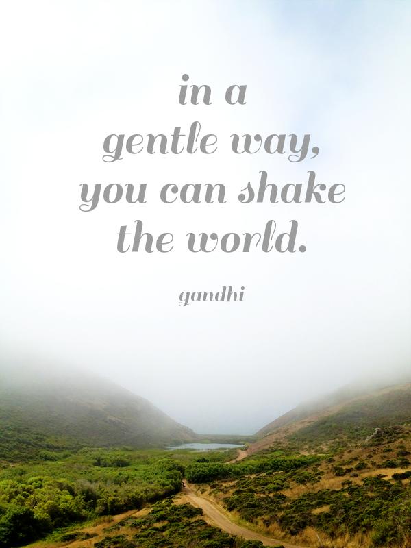Go Forth And Shake The World | Studio Tea Blog | Tea Collection