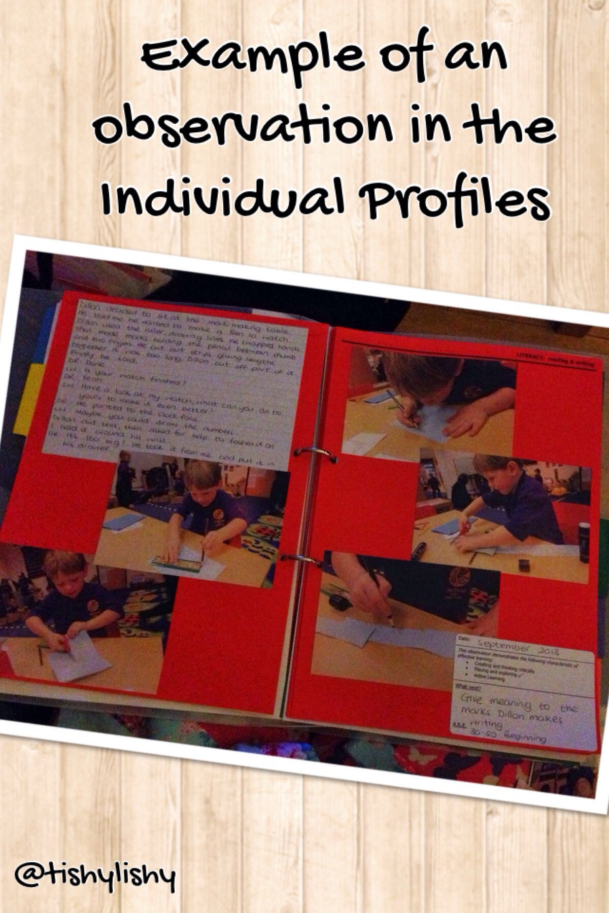 Observation In An Individual Profile In My Fs2 Class