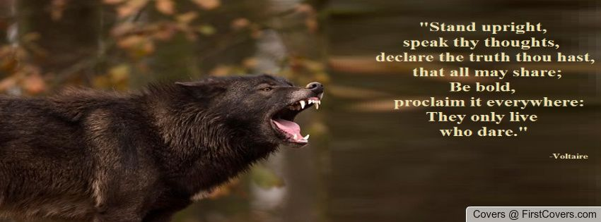 Black Wolf & Voltaire Quote