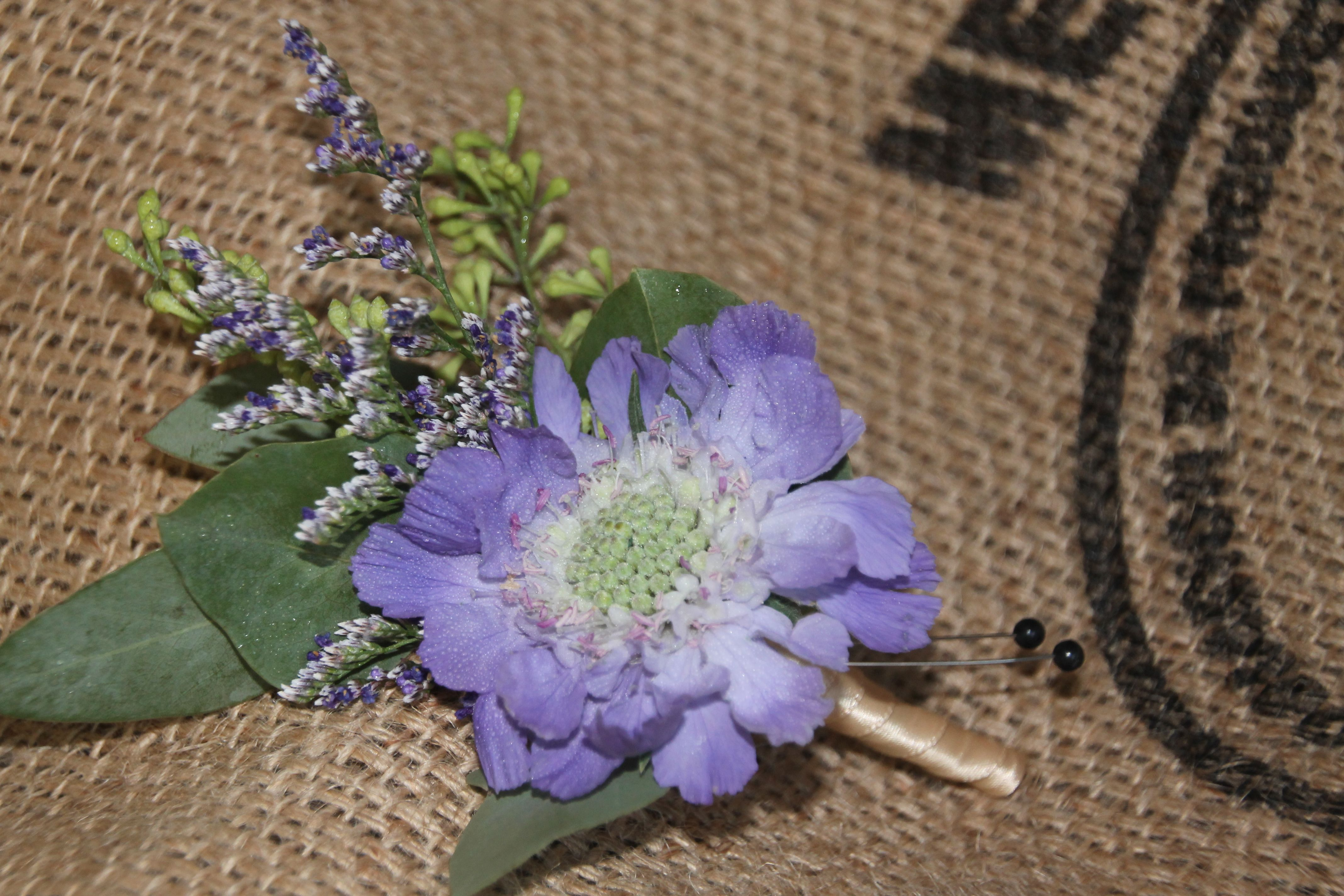 Blue Scabiosa Flower Misty Blue Boutonniere Created By Diane From