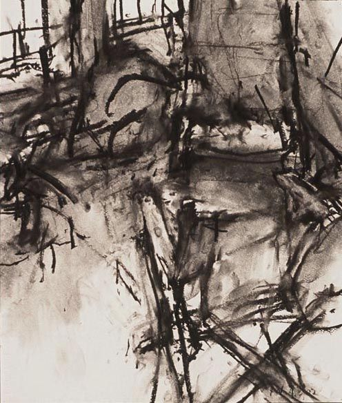 Wolfson, Interior 4.6.02, 2002, charcoal on paper, 25″x22″