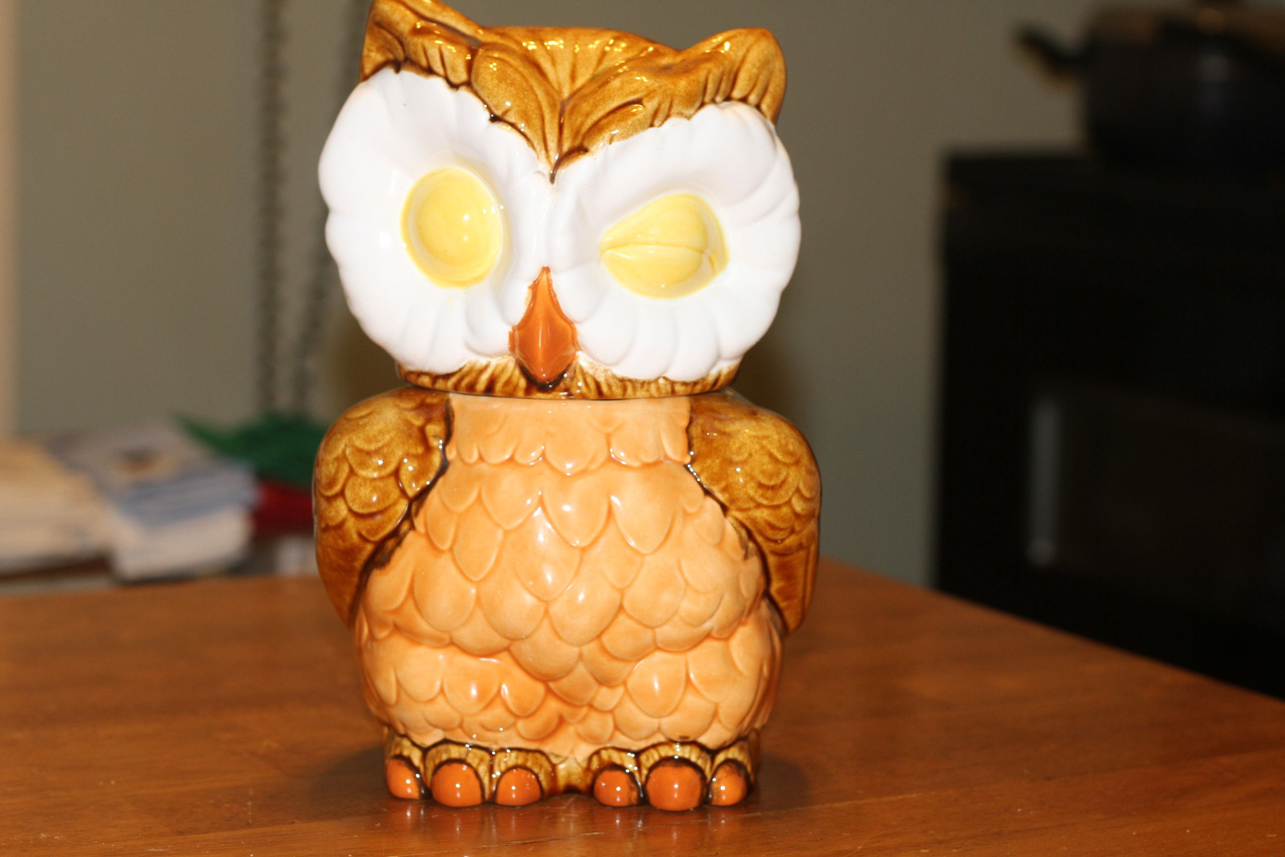 Wise Owl Cooking Jar!