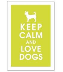 Image result for keep calm posters