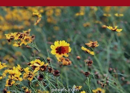 #gardening Jukio Kallio #gardening 6302680200, Pettitis Garden Center Jobs,  Gardening Compost Bins