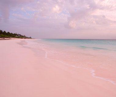 Papakolea Beach, Hawaii   Pink sand beach bahamas, Caribbean and ...