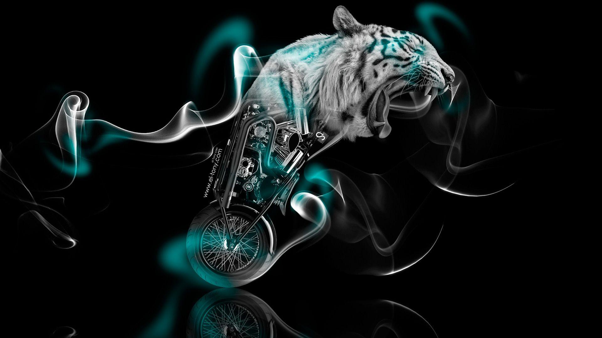 Pin by Candice Chisholm on Smoke & Powder | Animal wallpaper, Hd  backgrounds, Pet birds