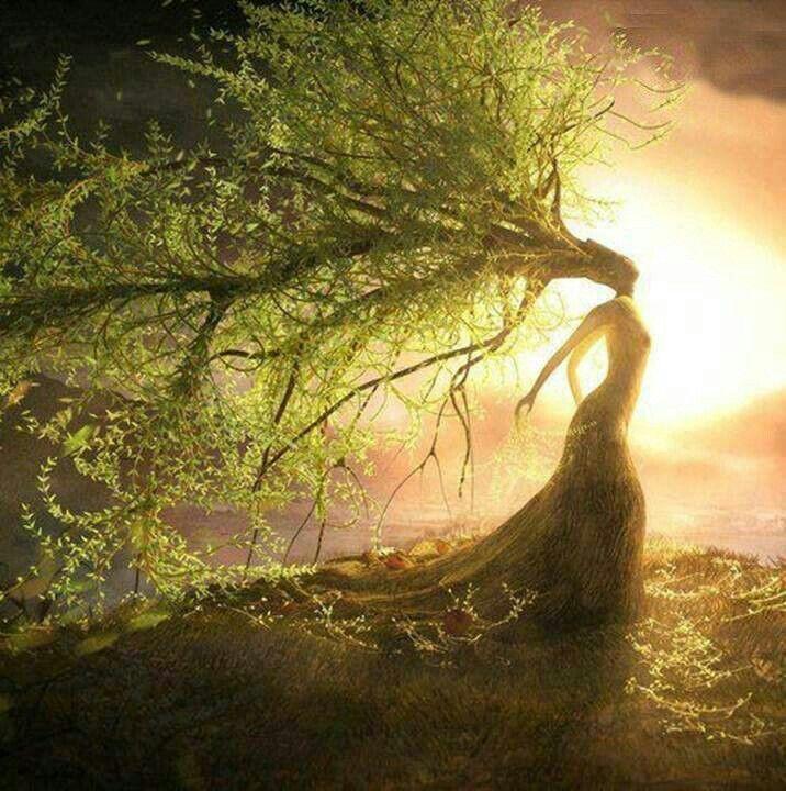 Mujer arbol  Dibujos  Pinterest  Tree woman
