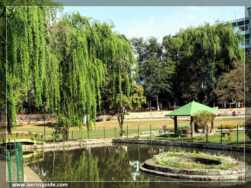 Lady Hydari Park is among the most frequented tourist spots of the region. The park is dedicated to the first lady of the province, Lady Hydari, wife of the Governor of Assam. Lady Hydari Park encompasses a wide variety of local flowering plants and orchids, and is landscaped in Japanese style.