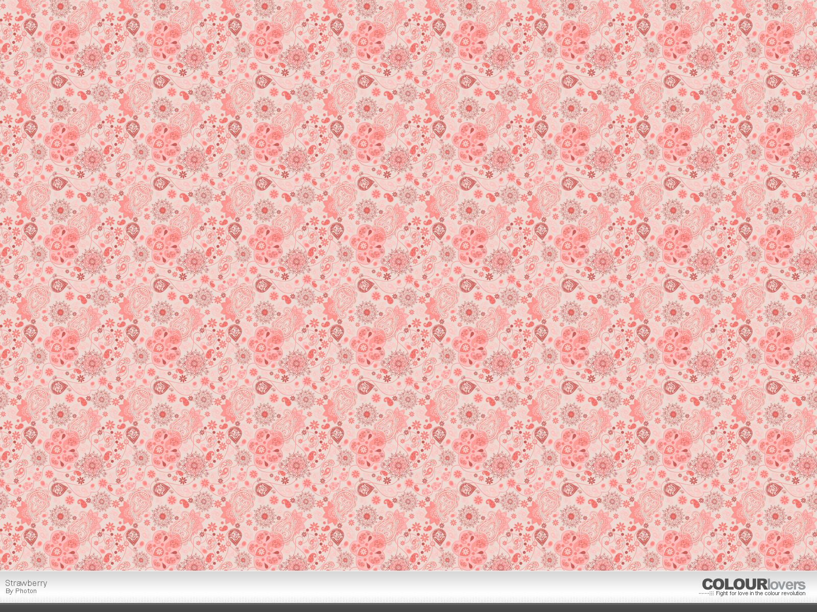 photo collection pink wallpaper patterns images