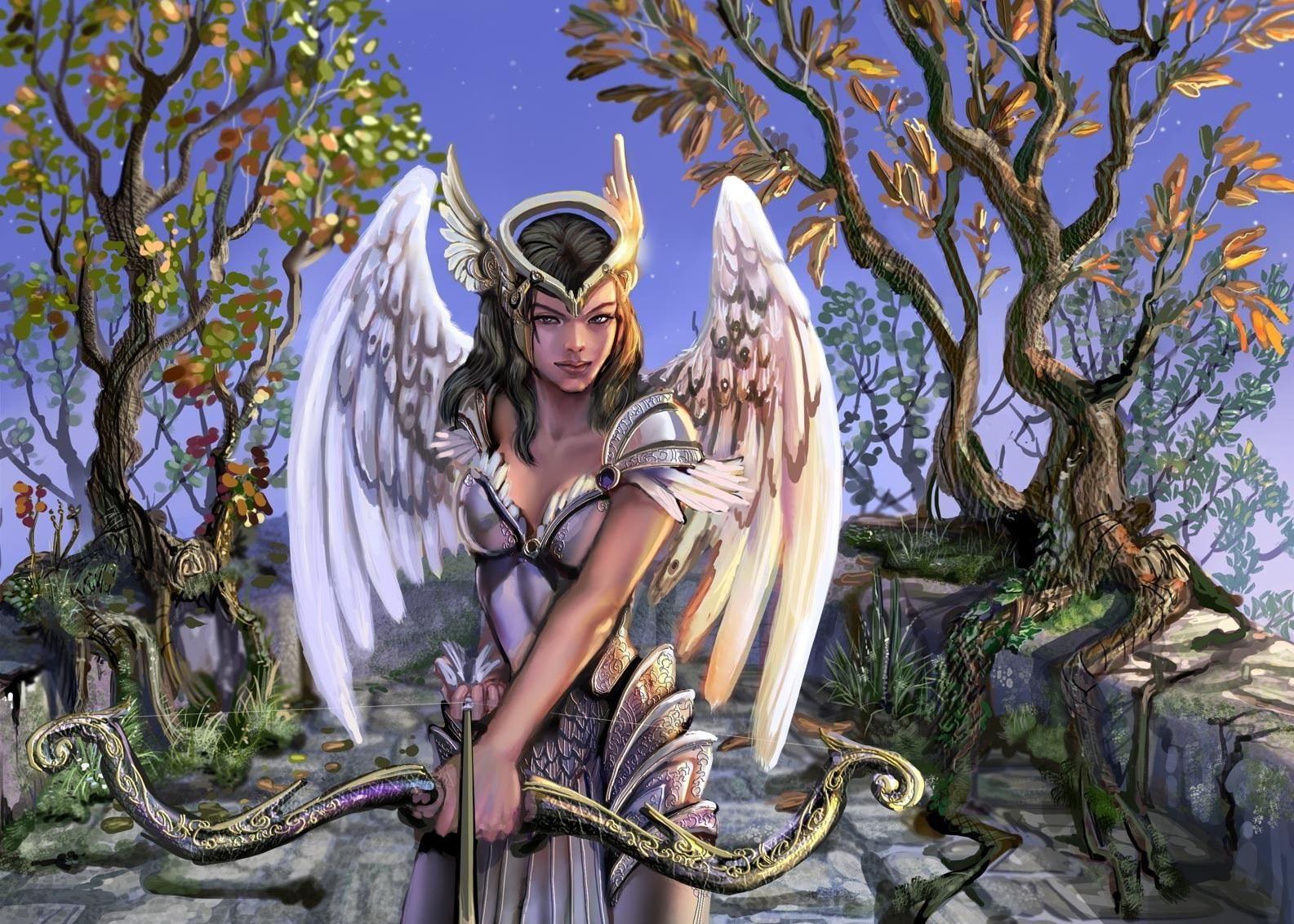 Fantasie - Angel Warrior