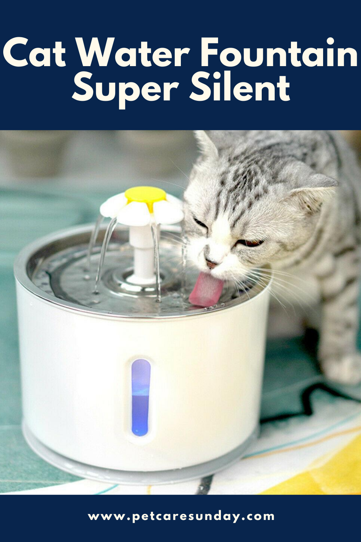 Cat Water Fountain Super Silent In 2020 Cat Water Fountain Pet Water Fountain Water Fountain